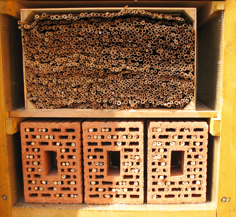 verband der gartenbauvereine saarland rheinland pfalz e v nisthilfen f r bienen. Black Bedroom Furniture Sets. Home Design Ideas