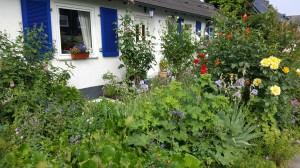 Rettet den Vorgarten