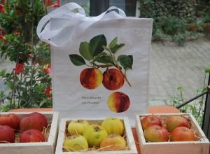 Tragetaschen mit Obstmotiven