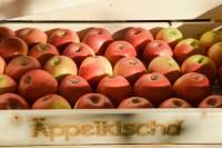 Die perfekte Lagermöglichkeit für die Apfelernte.