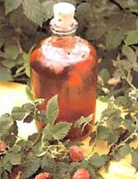 Beerenessige selber machen
