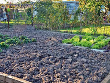 Vgid Gartenbauvereine Gartenboden Im Winter